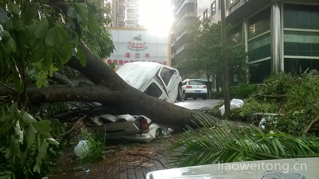 2015湛江台风彩虹,小车被压碎